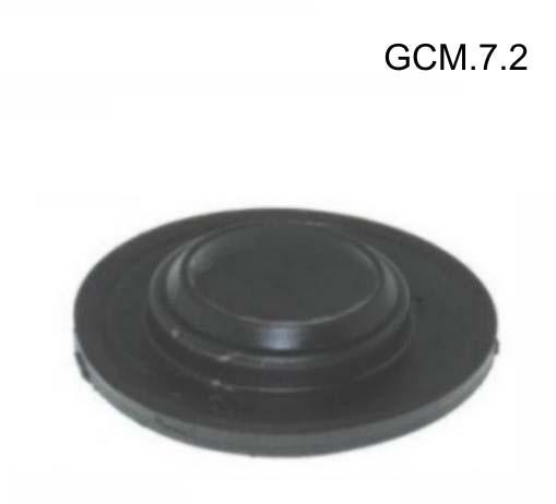 GCM.7.2